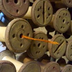 bobbin with orange thread